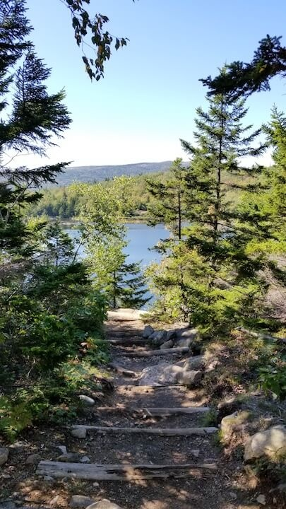 Lake with evergreen trees and rocky path