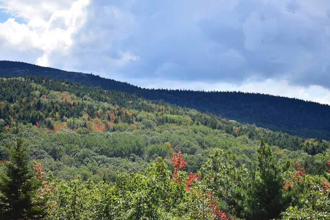 Mountains with green trees and a few red and orange leaves