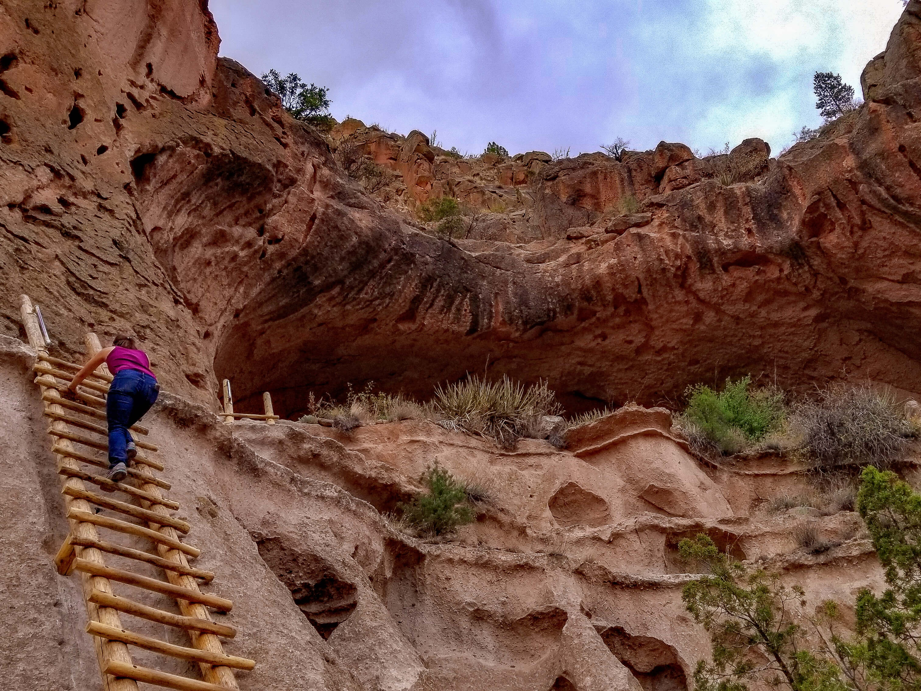 Woman climbing up ladder into alcove house Bandelier National Monument