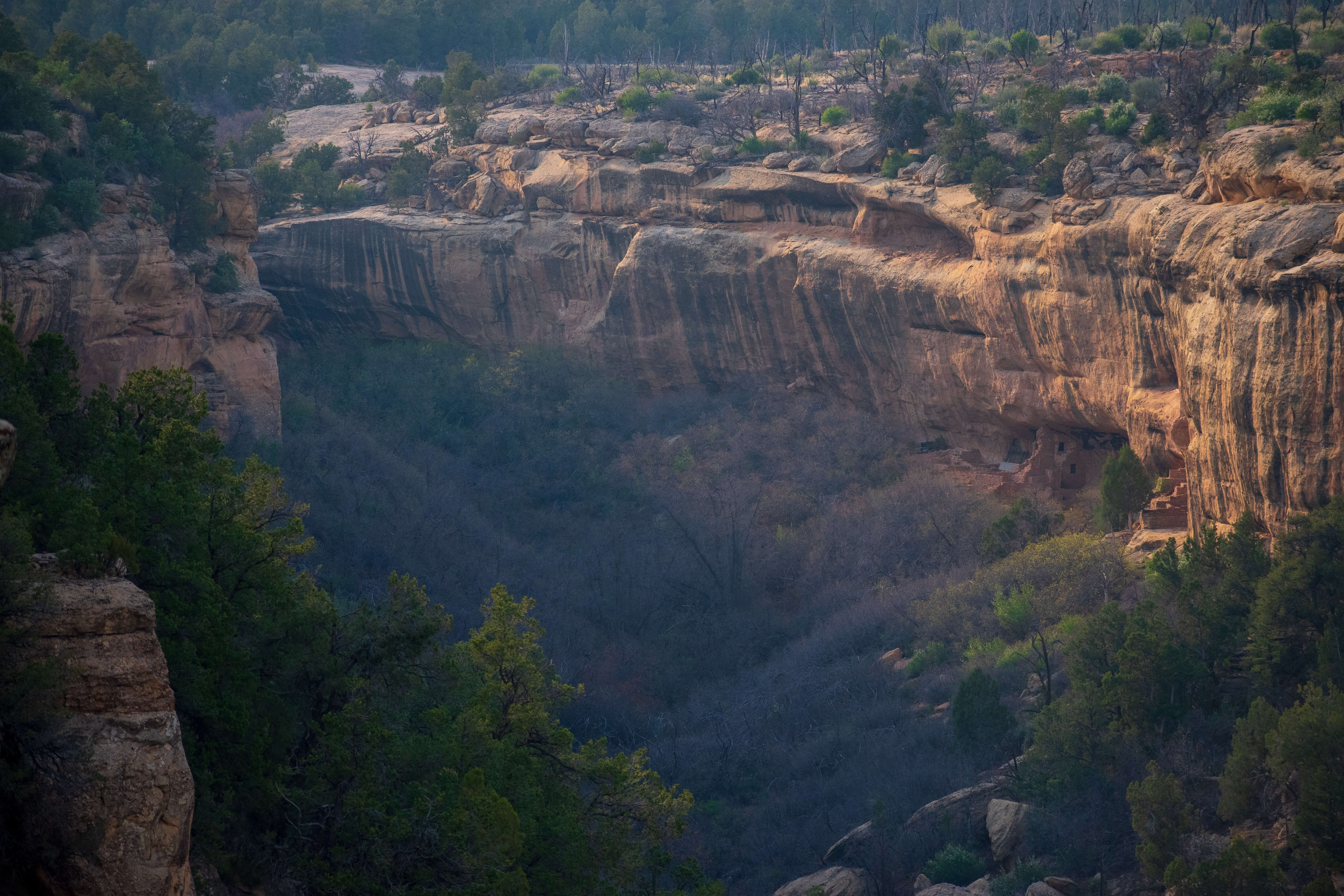 Canyon with Cliff Dwellings Mesa Verde