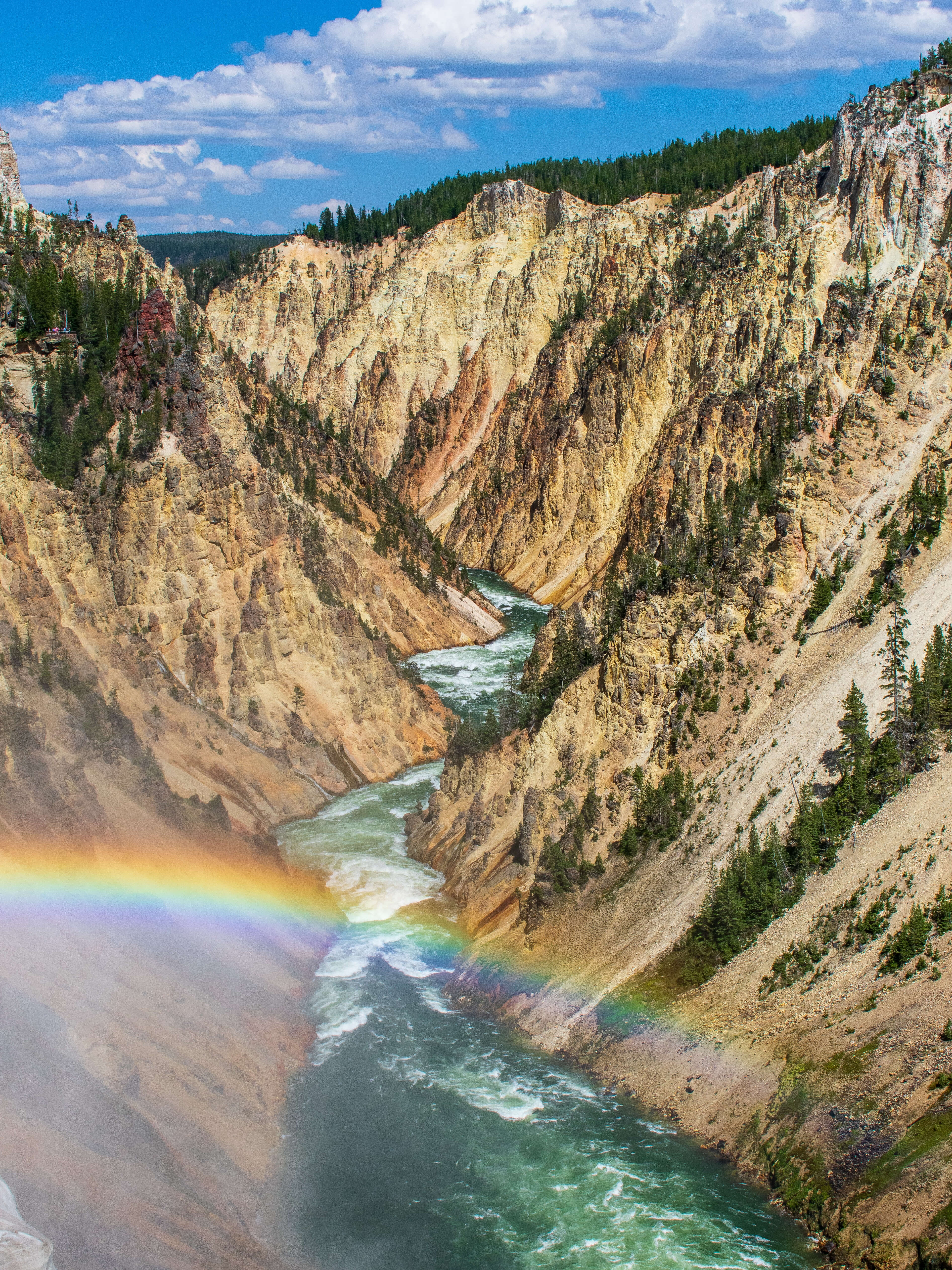 The Grand Canyon of Yellowstone with Rainbow