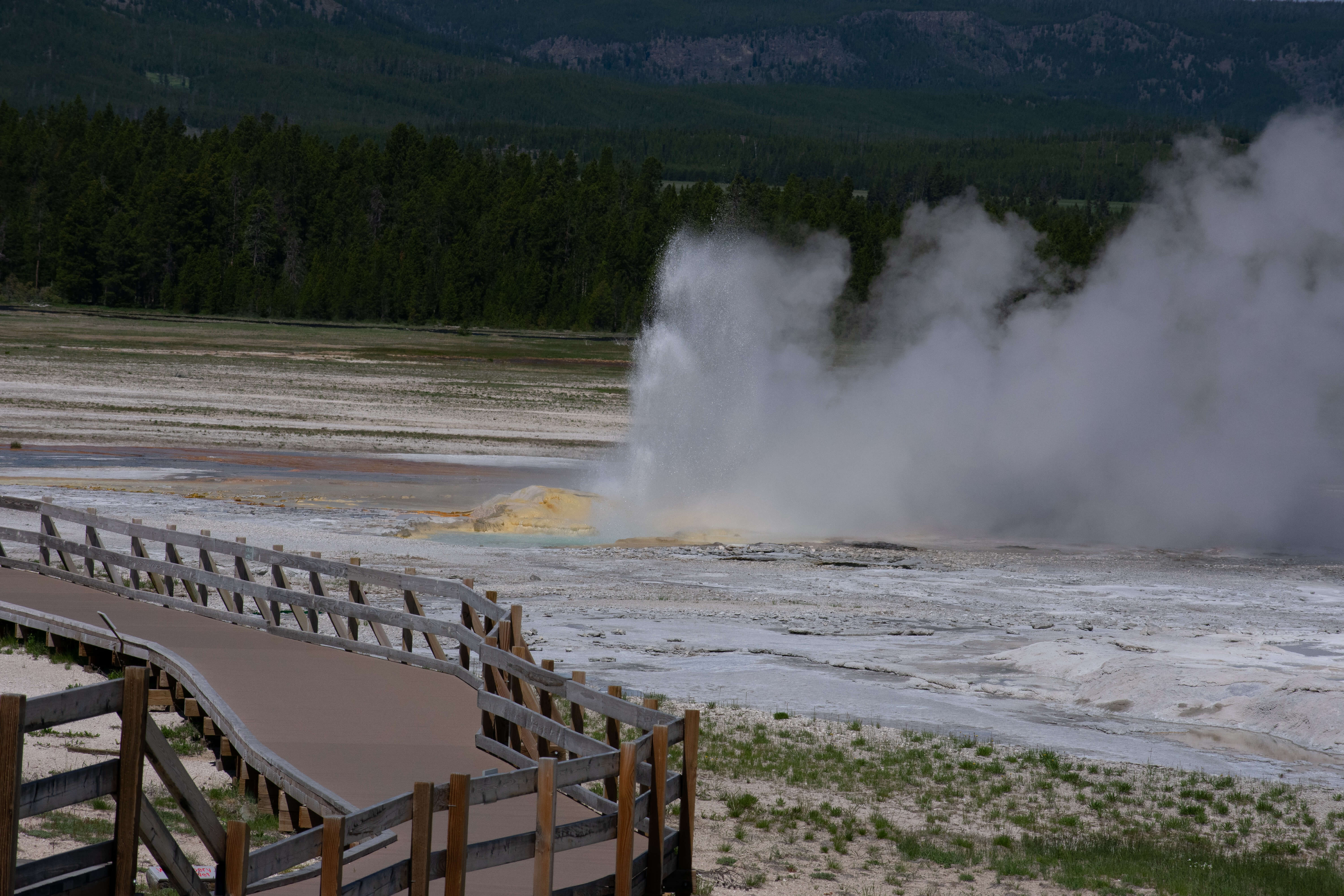 Geyser erupting Yellowstone National Park
