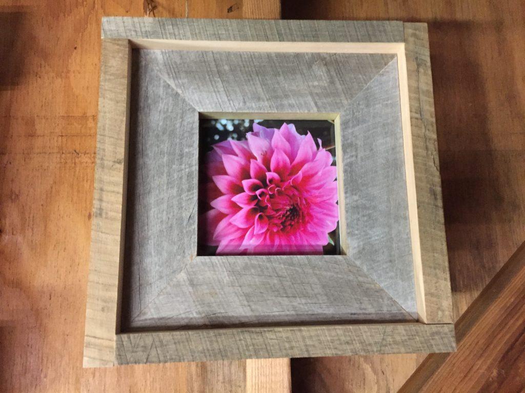 Tulip Poplar and Maple Frame