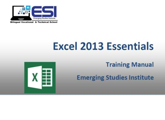 MS Excel 2013 Essentials