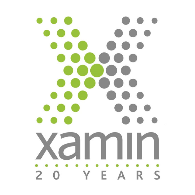 Xamin Celebrates 20 Years of Delivering Technology Solutions
