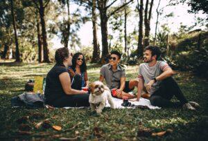 People and dog at a picnic