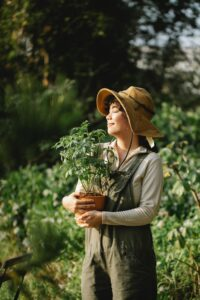 Woman wearing hat holding a potted plant