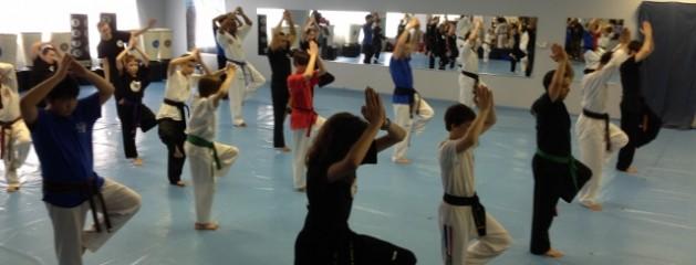 Angel's Karate TaeKwonDo training team