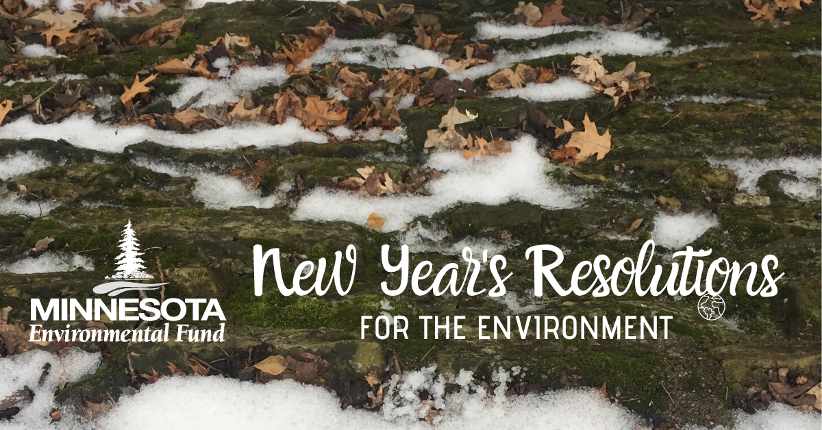 New Year's Resolutions for the Environment