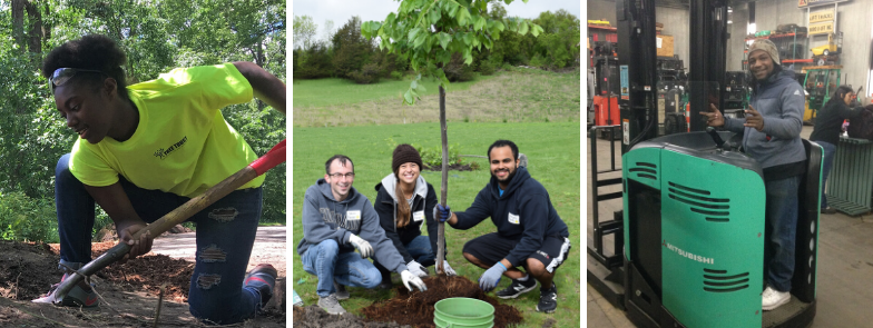 Tree Trust – Improving the Environment by Investing in People
