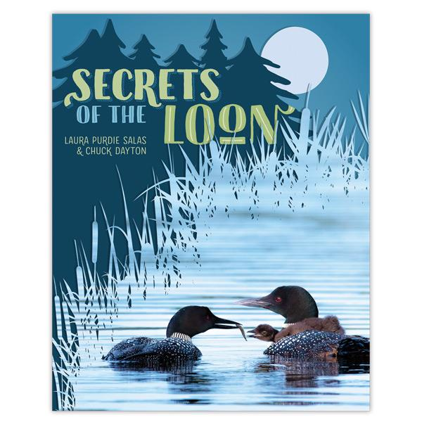New Childrens' Book – Secrets of the Loon