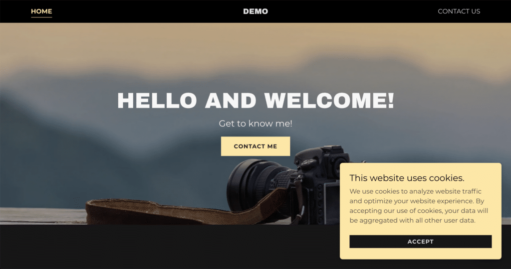 Here is a screen shot of the demo website that I just made for this video tutorial.