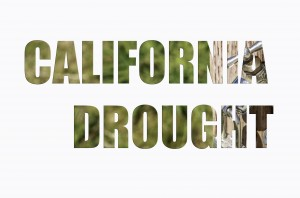 shutterstock - california drought