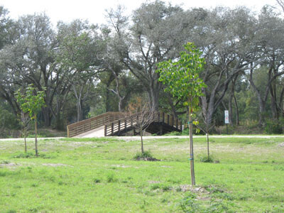 Wooden bridge in public park