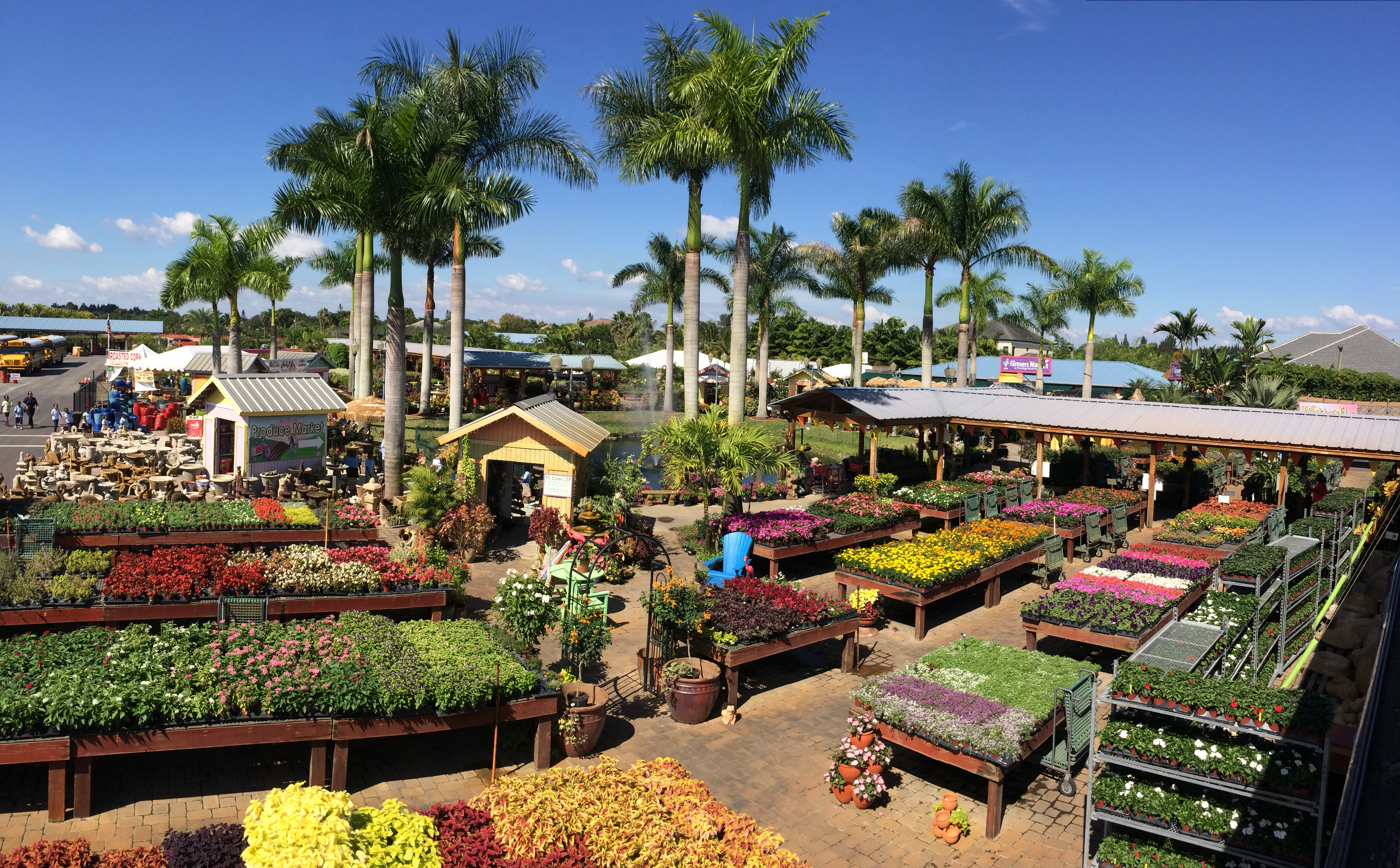 Large, well stocked garden nursery