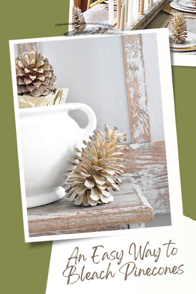 Pinterest Pin for an easy way to bleach pinecones