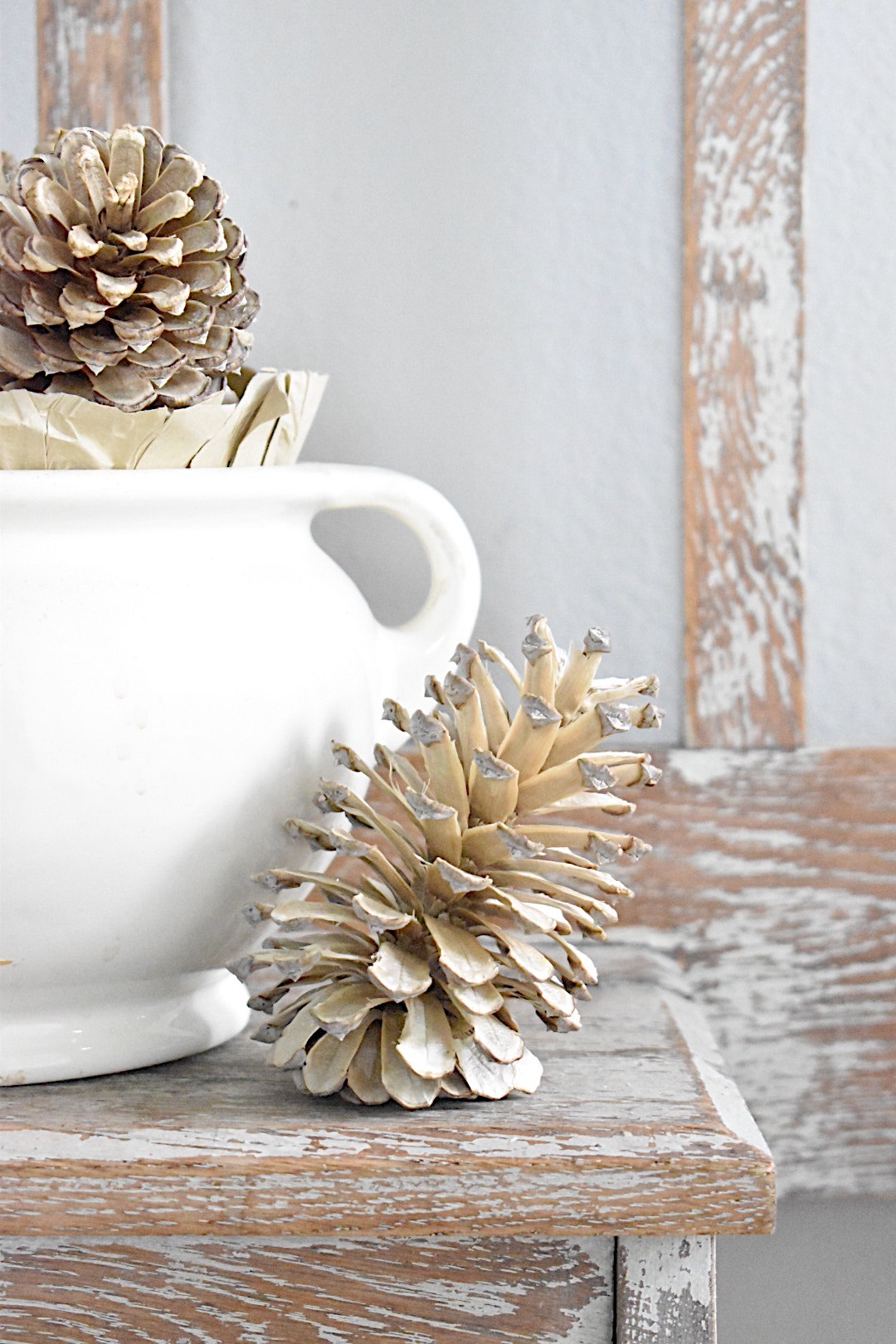 bleached pinecone sitting beside white ironstone pot