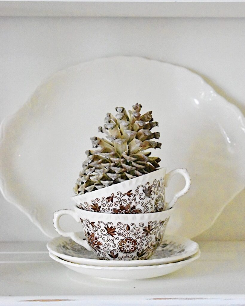 bleached pinecone display