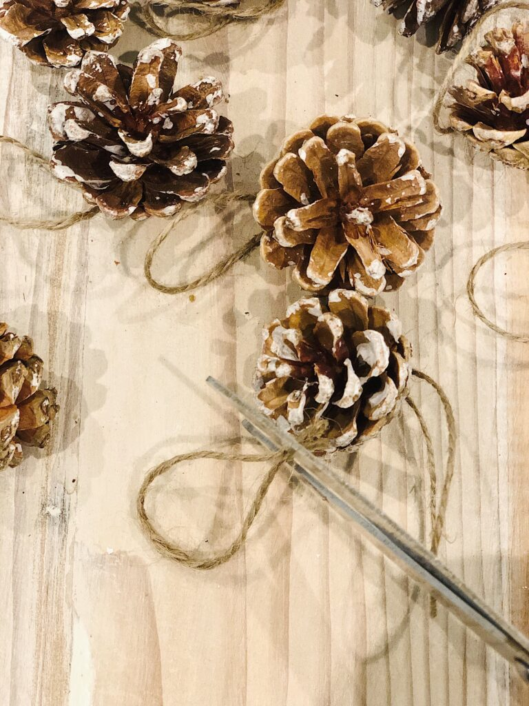 tiny pinecones for making pinecone Christmas tree
