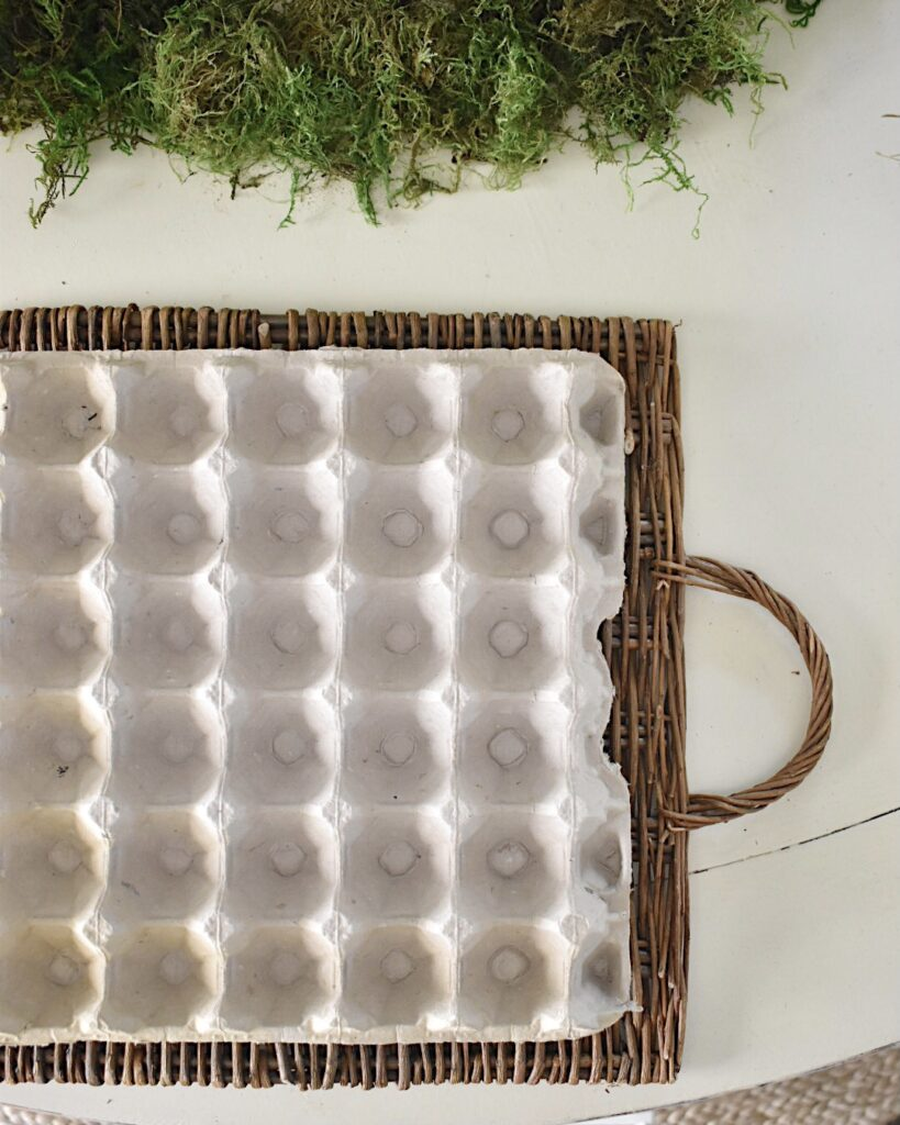 egg flat plate chargers