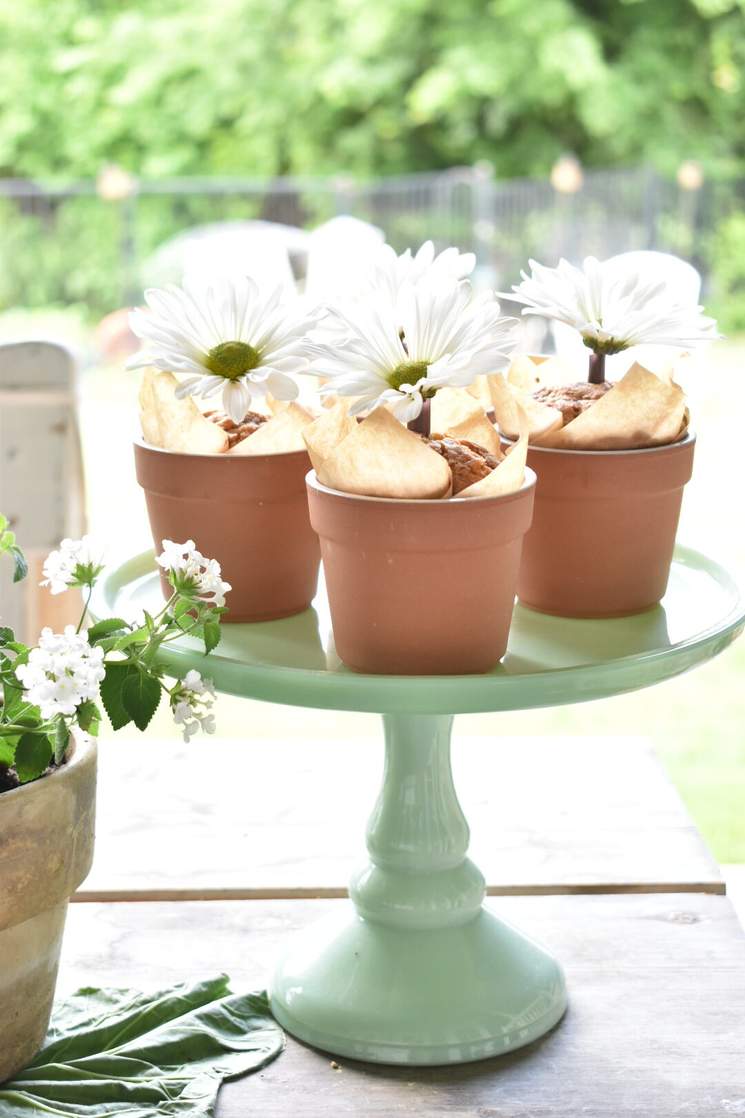 carrot muffins served in flower pots
