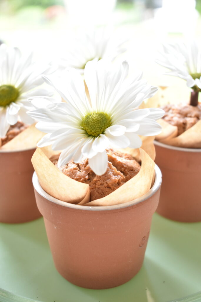 carrot muffins in flower pots