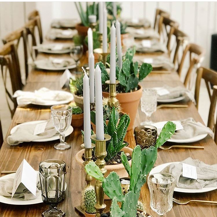 head table at a boho style wedding reception. cactus in clay pots create a runner down the center of a farm table, and vintage candlesticks are randomly placed along the pots