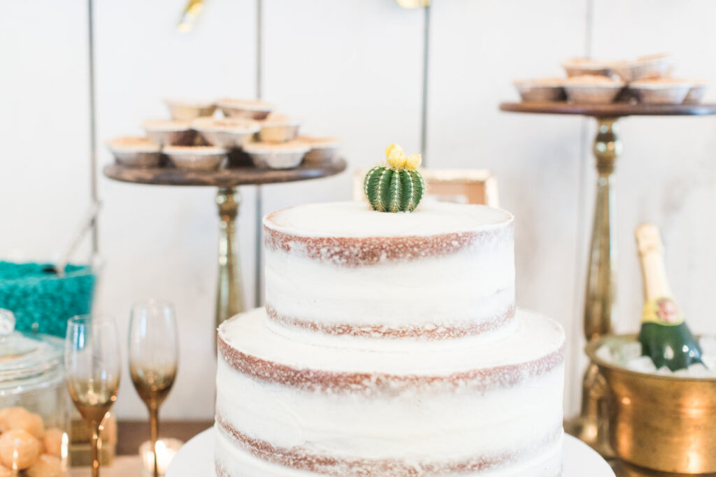 naked wedding cake with succulent for topper