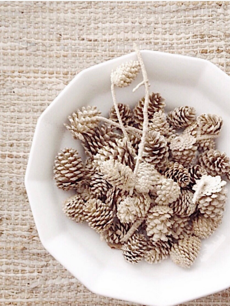 white footed bowl filled with small bleached pinecones