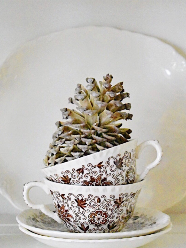 2 brown transferware teacups stacked on top of each other with a bleached pinecone standing inside