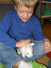 Boy with bunny at Montessori Children's School of Northfield