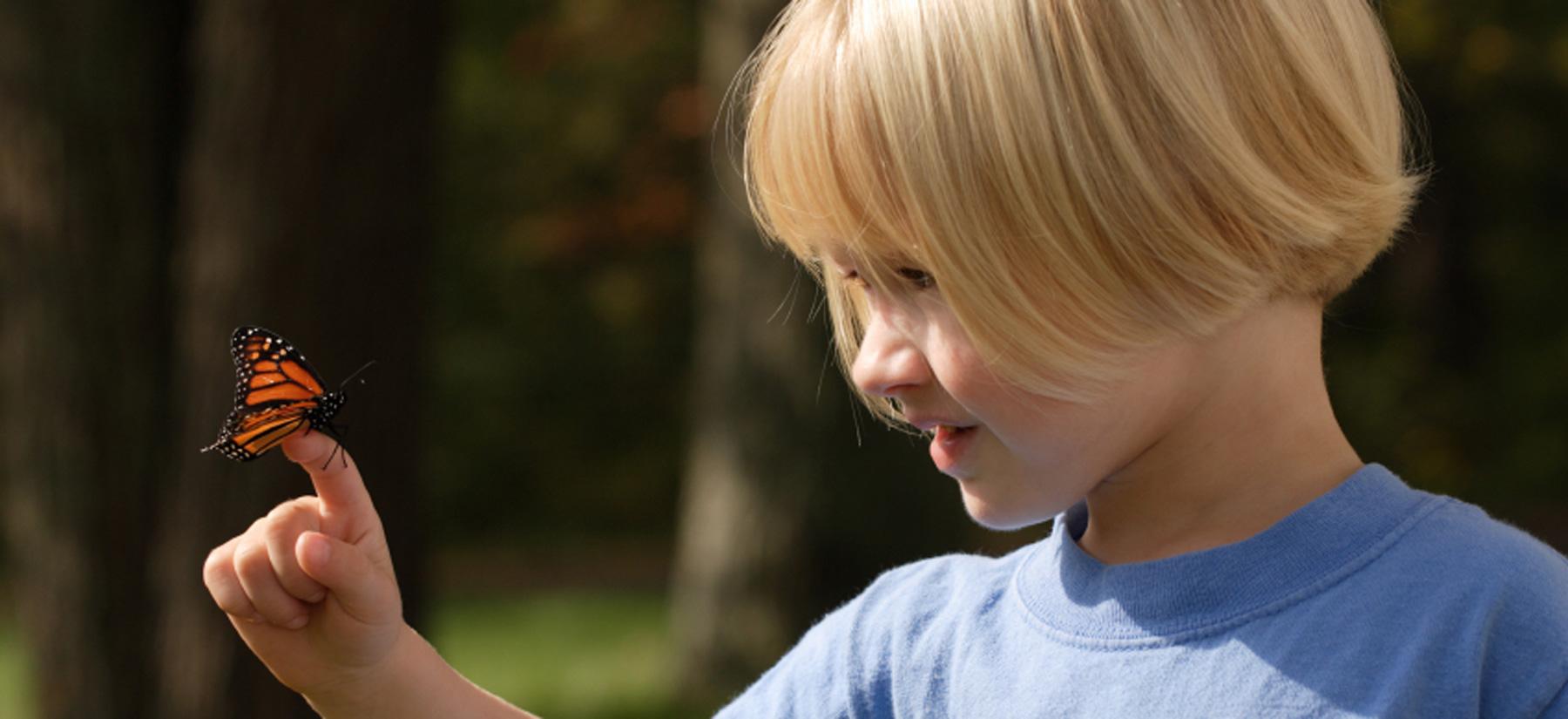 Child with butterfly at Montessori Children's School of Northfield