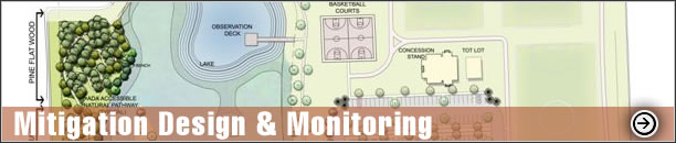 Mitigation Design & Monitoring - Construction Inspection , Time zero & quarterly monitoring