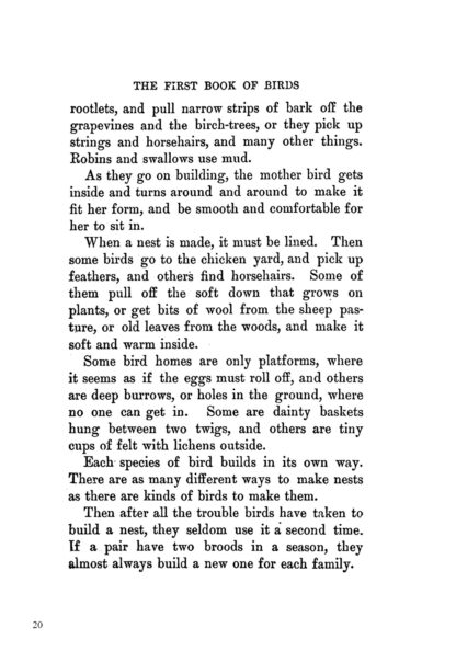 Complete Book of Birds Image 4