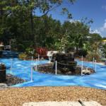 peace park(island-dolphin-care)