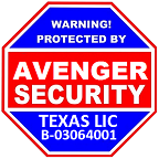 Avenger Security System Solution Services