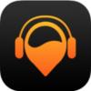 radioguide