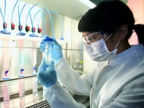 Stem Cell Research : Study Diseases
