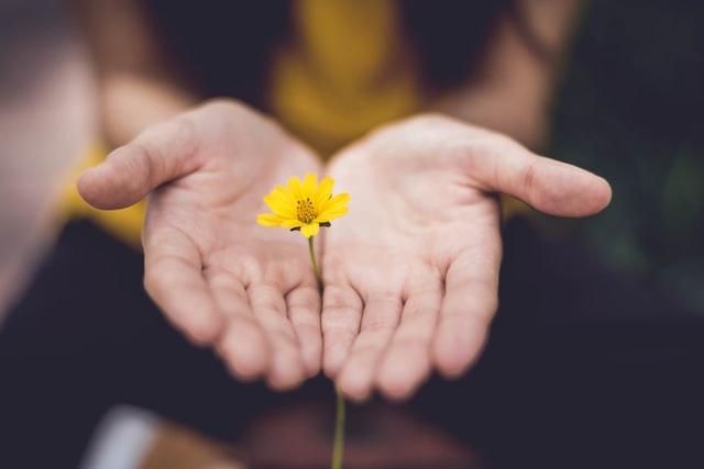 Hope And Healing: The Beauty Of Cultivating Hope In Uncertain Times
