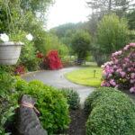 Reiki Ranch flowers along the driveway