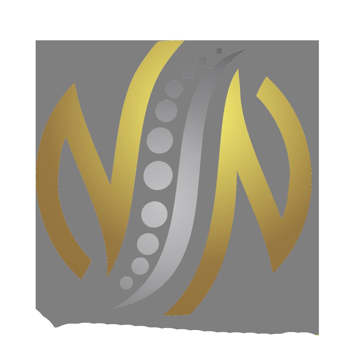 nnspine logo