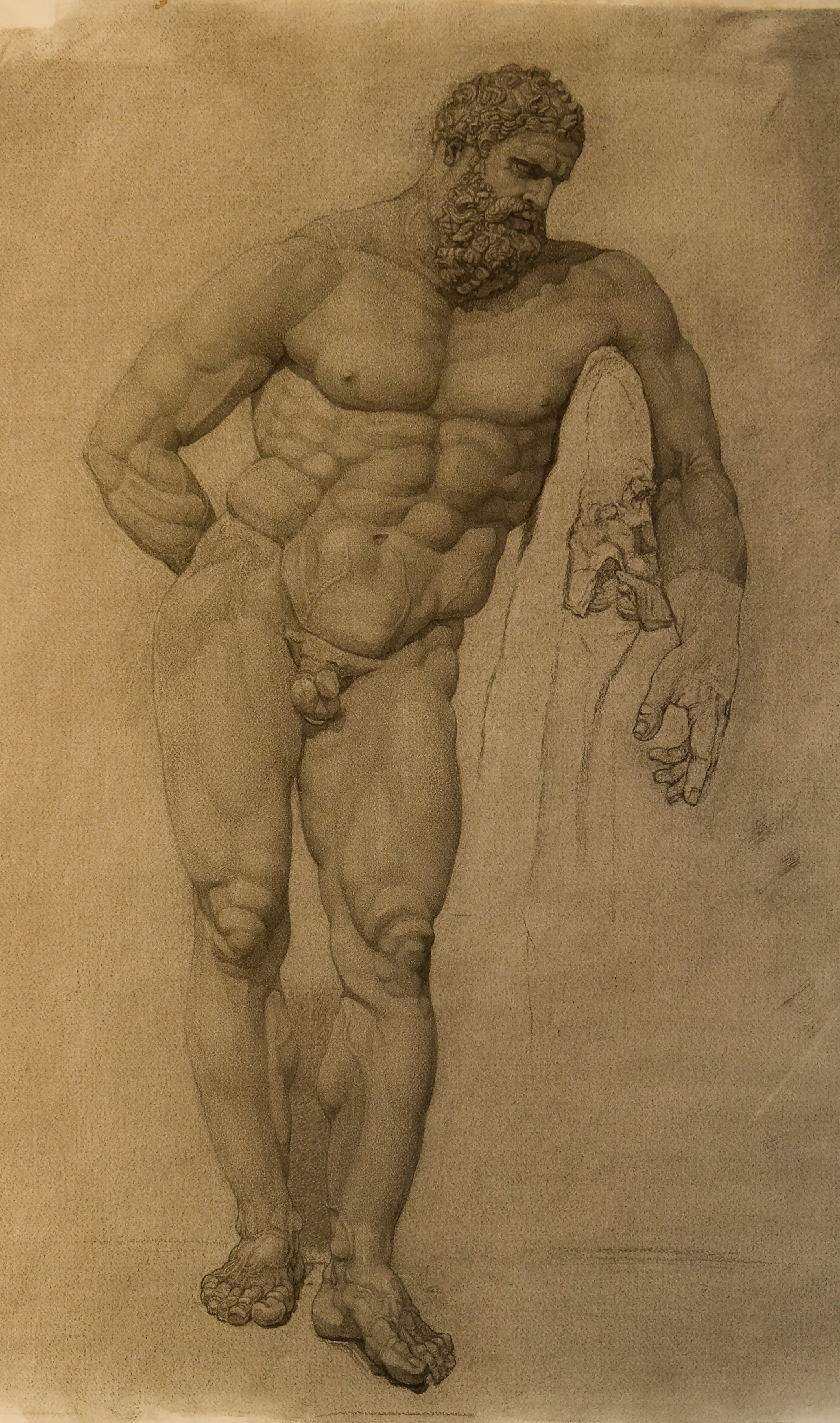 Farnese Hercules, Hellenistic sculpture in the National Archeology Museum, Naples, charcoal, by P. Brad Parker