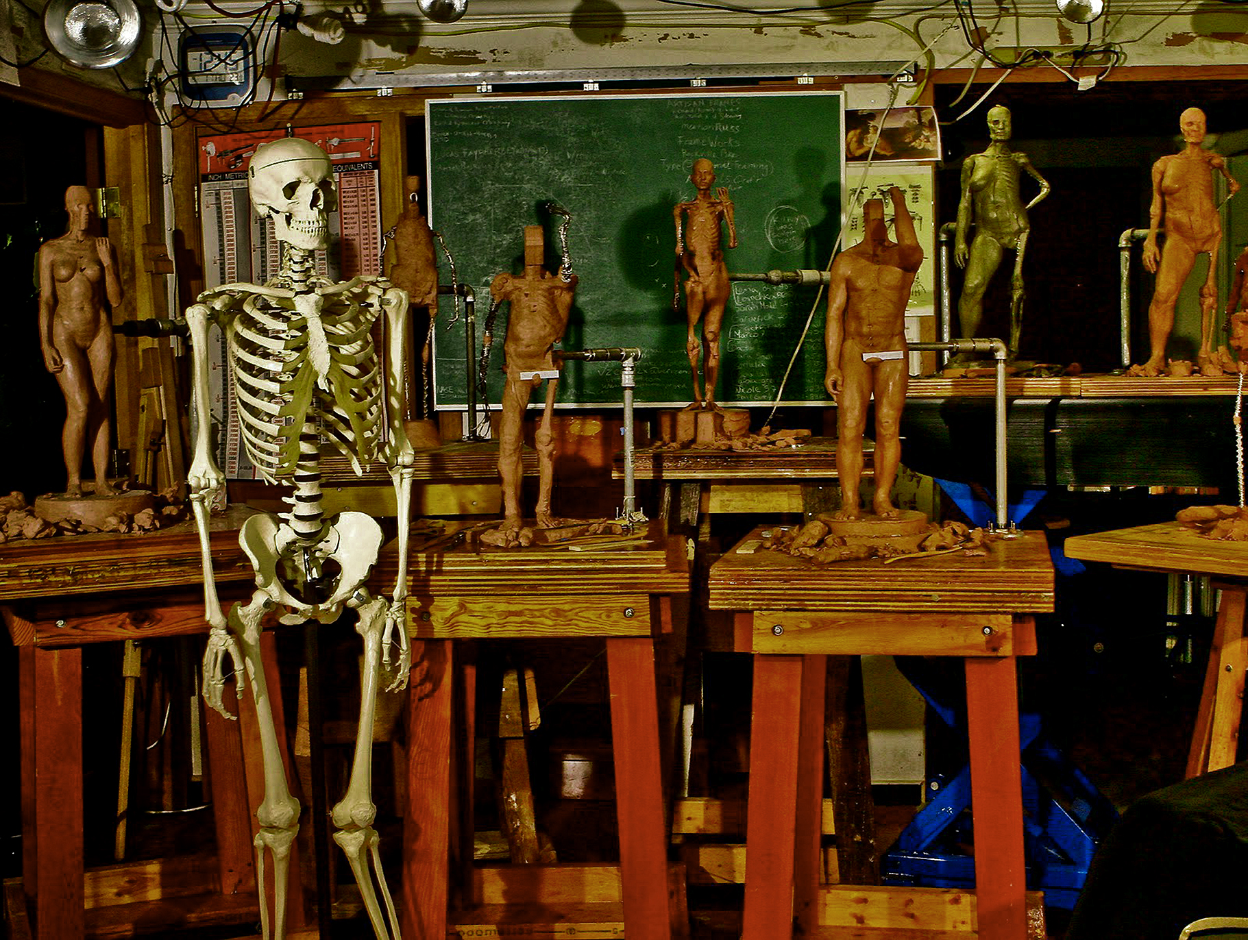 Sculptures and learning aids from the anatomical sculpture class, in the old Bethesda studio.