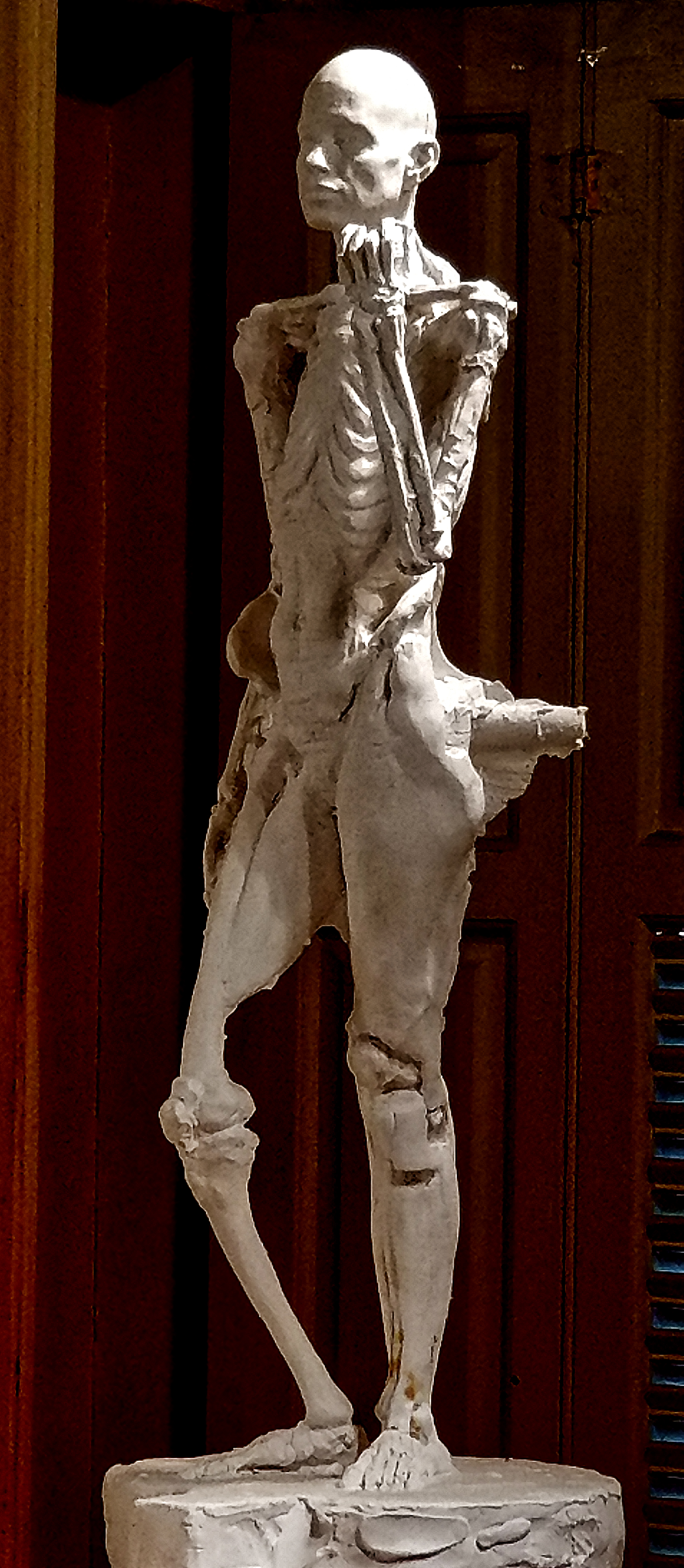 Anatomy Figure Class Demonstration Sculpture, Plaster - unchased - raw, Ana Russian Front Side View
