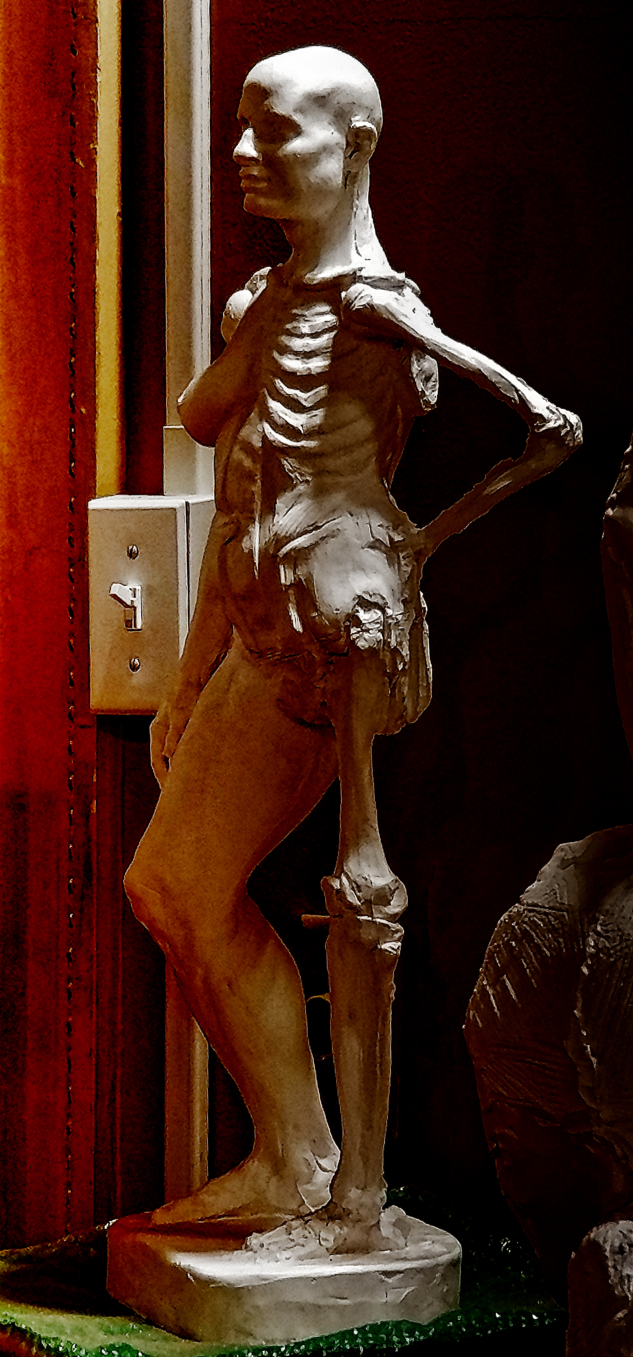 Anatomy Figure Demonstration Sculpture From Class, Plaster - unchased - raw, Anna Prussian Side View