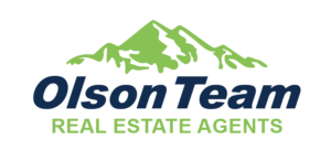 Mountain Logo 12