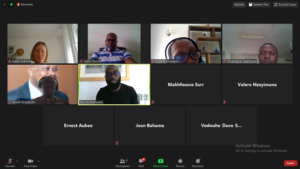 Screenshot of the EOA-I RSC & FAO Africa virtual meeting