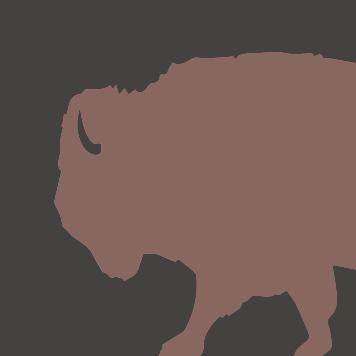 Yellow River Wildlife Sanctuary Bison icon