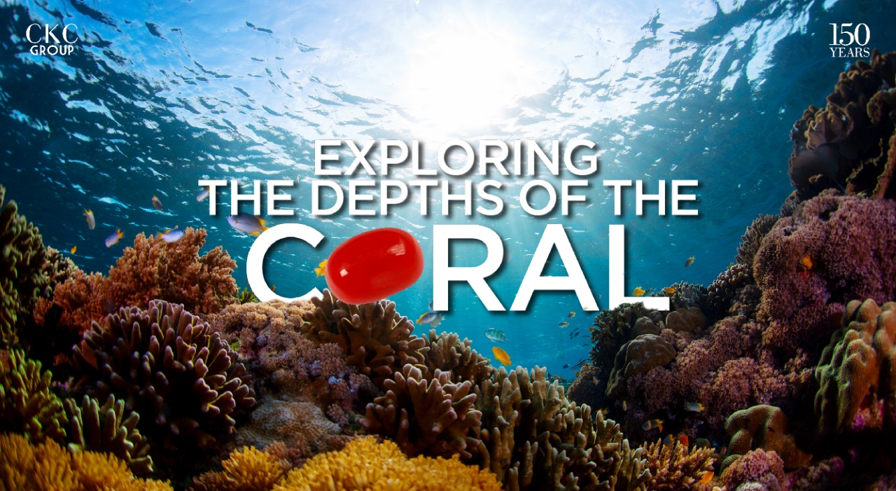 Exploring the Depths of the Coral