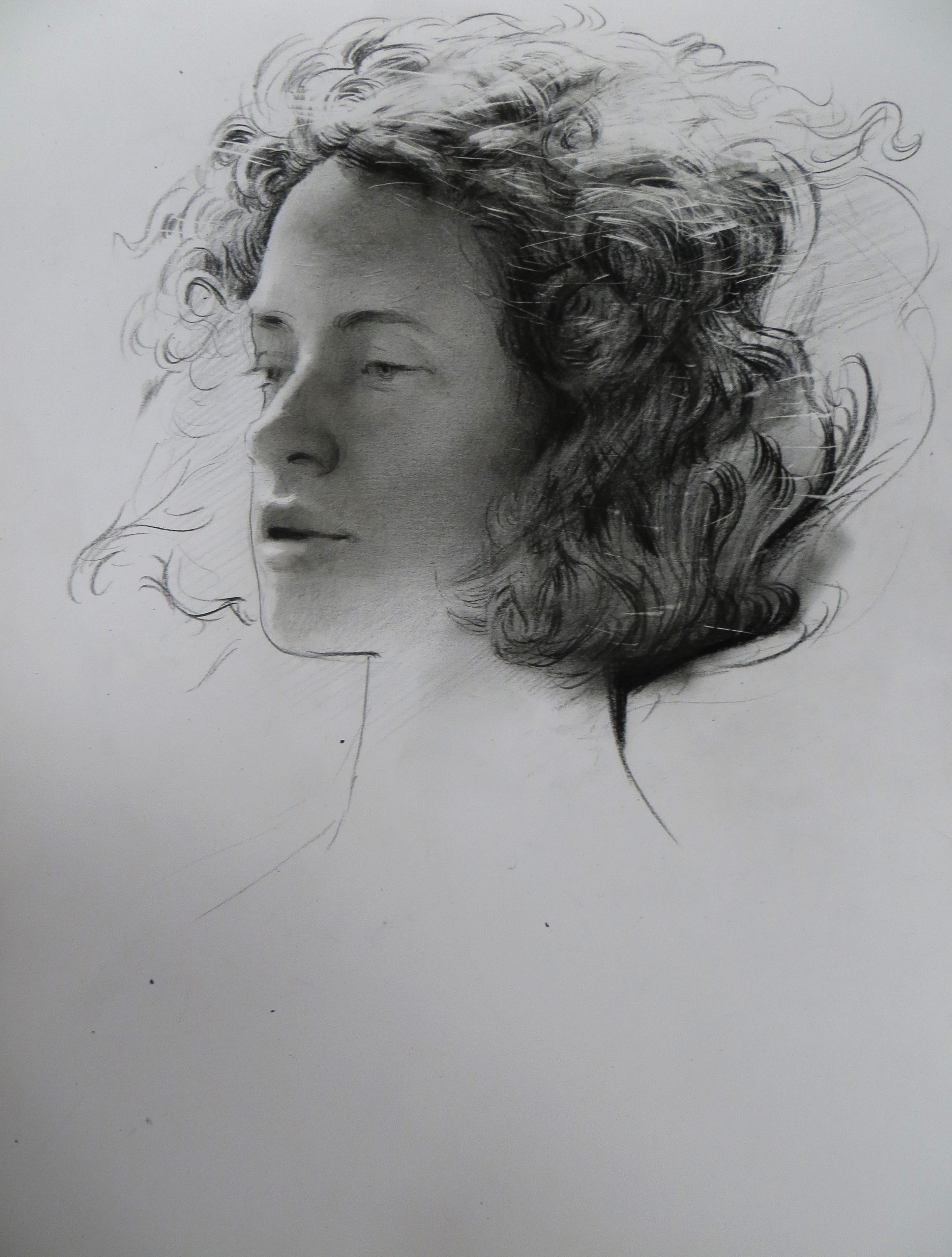 assael drawing